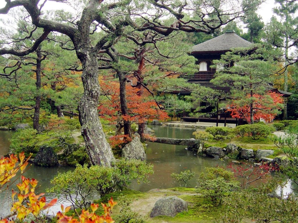 Jardin japonais for Jardin jardin